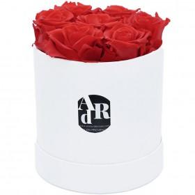 Coffret 7 Roses Rouges