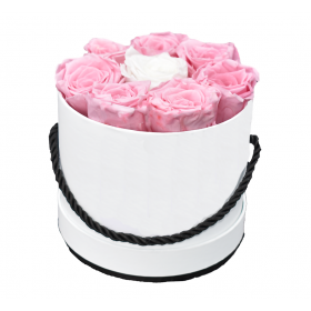 Coffret 8 roses -blanc/rose