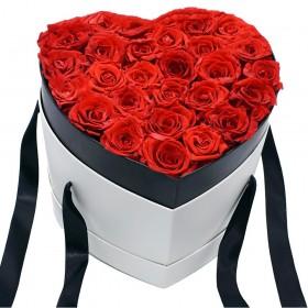 Cœur Roses Rouges